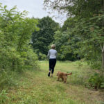 Unser Guide: Walking - voll im Trend